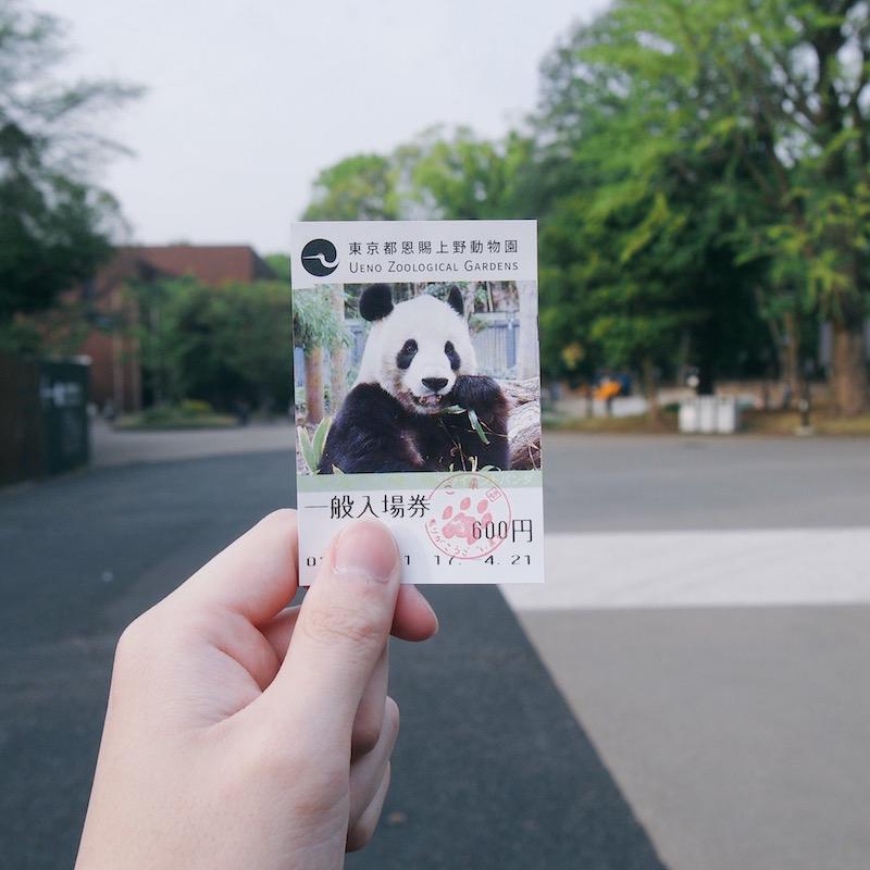 上野動物園の入場券(大人600円)