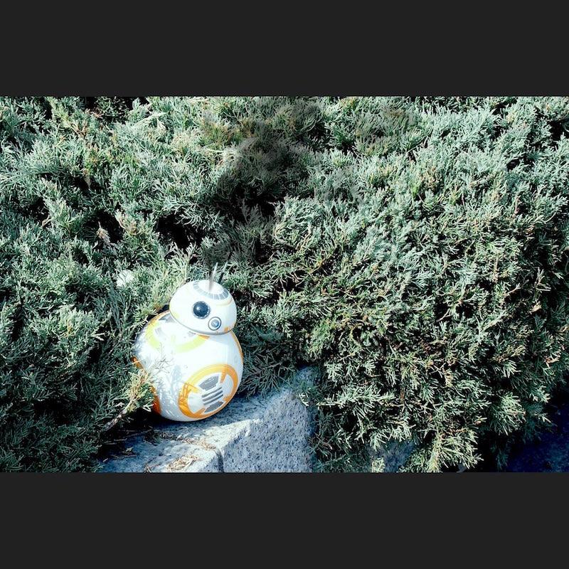 BB-8にズームアップした写真